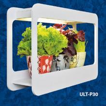 Стильная подставка для растений со светодиодной подсветкой Minigarden.